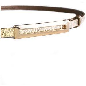 High Shine Gold Skinny Belt